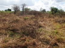35_Kitgum treatment site view from landmark 2